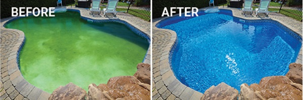 How to fix a green pool